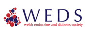 Welsh Endocrinology and Diabetes Society (WEDS)